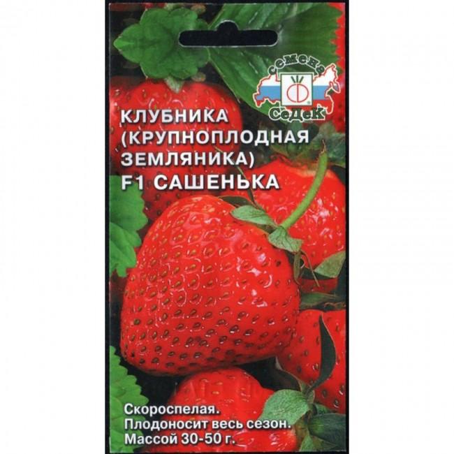 Семена Земляника Сашенька Седек Ц