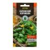 Семена Огурец Парижский корнишон 0,3 г Тимирязевский питомник