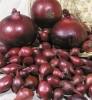 Семена СЕВОК Лук Ред Барон 8-21 мм 0,3 кг