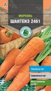 Семена Морковь Шантане 2461 средняя 2 г Тимирязевский питомник