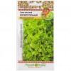 Семена Салат Восхитительный F1 листовой (Вкуснятина)НК Ц