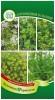 Семена Кухонные травы для консервирования и солений Гавриш Ц