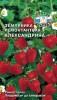 Семена Земляника Александрина Седек Ц