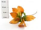 Цветок Пуансетия 30см Е 91402