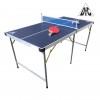 Теннисный стол для помещения DFC DS-T-009 9 мм, складной, синий