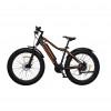 Электровелосипед 2-х колесный (велогибрид) HOVERBOT FB-2 500W Черный/оранжевый